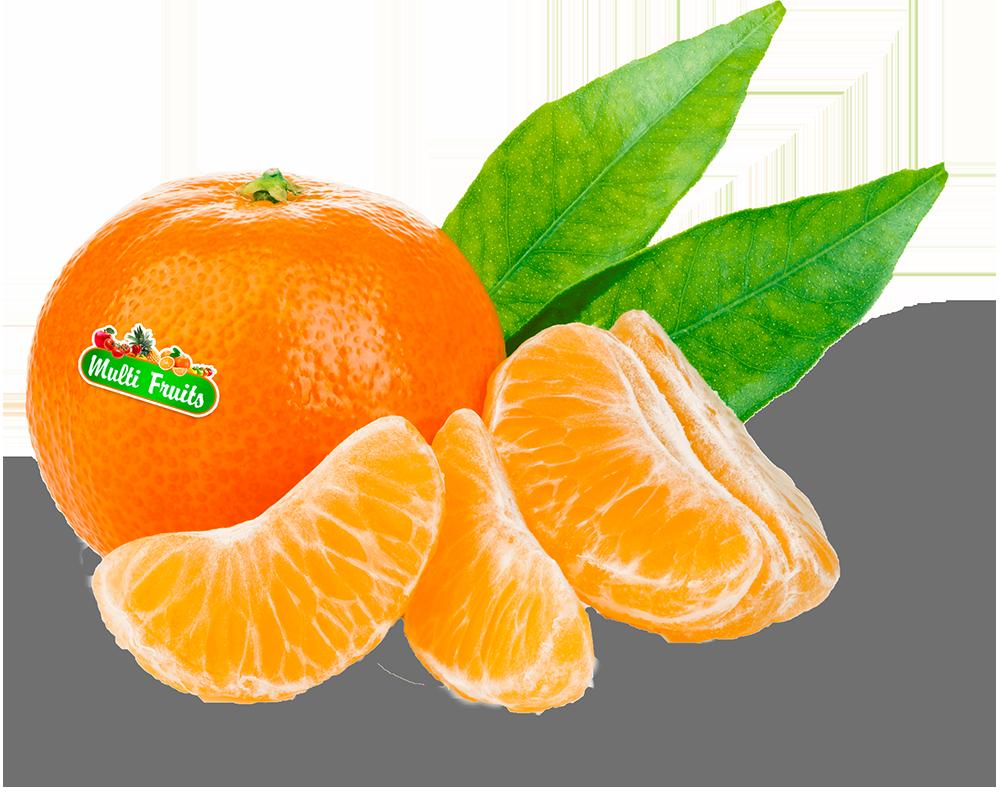 Clémentine Multi Fruits